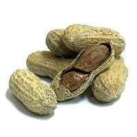 Dill Pickle Peanuts in Shell
